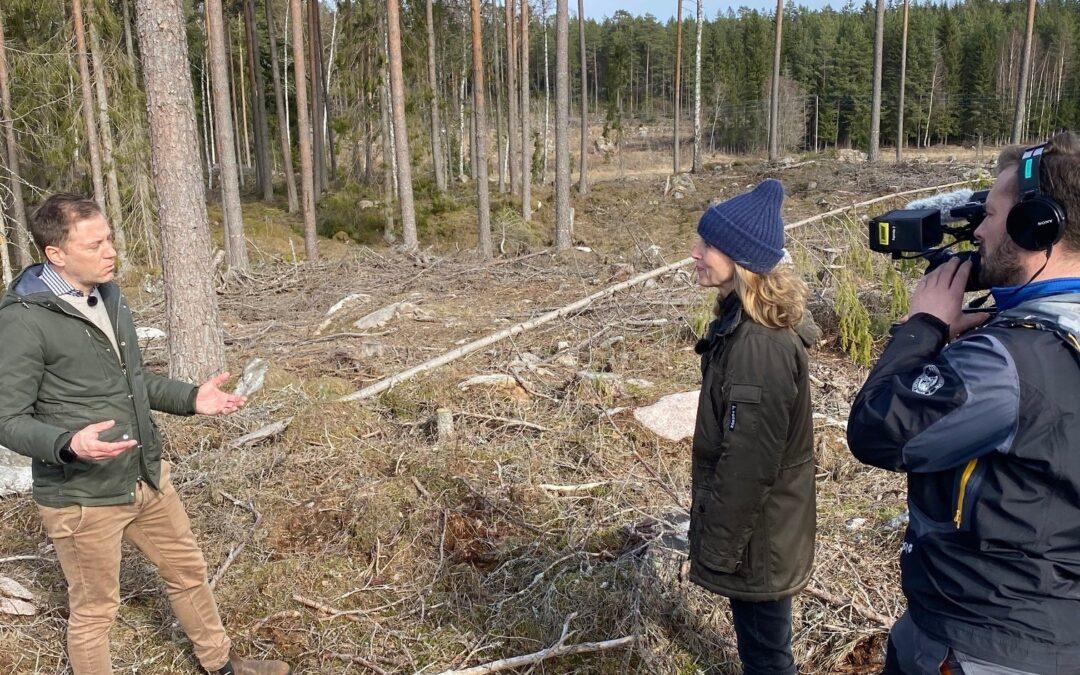 Häradskogs medverkan i SVT Agenda